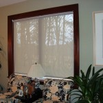 Den Window with Roller Shade